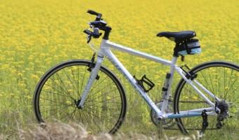 他のクロスバイクに差をつけろ!おすすめバーエンドを一挙紹介