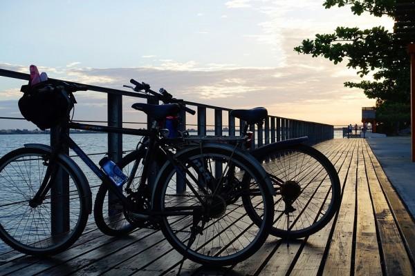 日本のサイクルロードが素晴らしい。壮大な自然と美しい景色を満喫