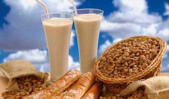 タイガーナッツはスーパーフード!その効能とダイエット方法をご紹介
