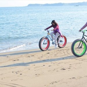 http://www.asoview.com/act/rentalbicycles/kanagawa/are0140500/pln3000002612/