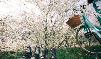 サイクリングで都内の自然を体感!おすすめスポット、公園をご紹介