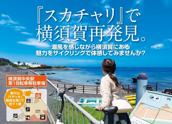 http://www.cocoyoko.net/news/sukachari.html