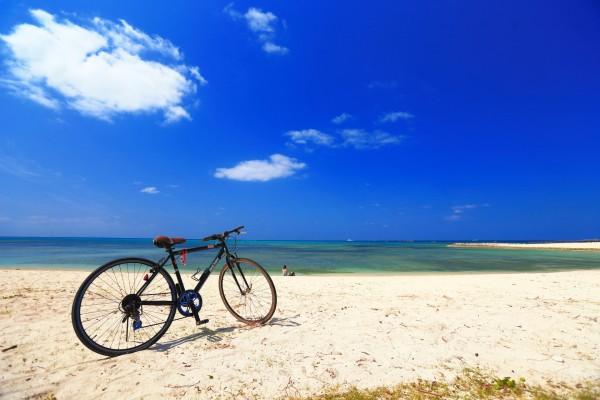 期間限定『スカチャリ』実施中。潮風感じる横須賀でサイクリング!