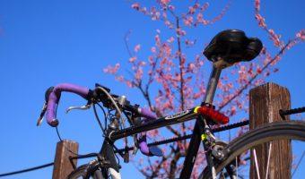 おしゃれ自転車で街乗りをもっと楽しく!おすすめのブランドをご紹介