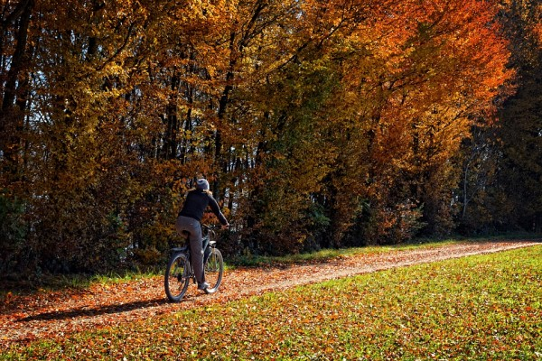 冬の自転車便利グッズ!本格的に寒くなる前に必要なものをチェック