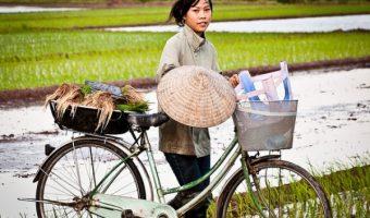【積みすぎ注意】風情ある写真で見る、世界のびっくり自転車活用事例